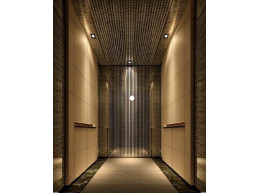 Atlantis Elevator  & Escalator KABİNLER